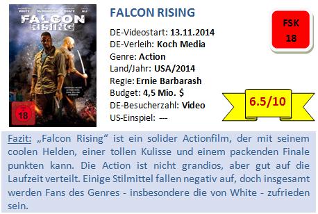 Falcon Rising - Bewertung