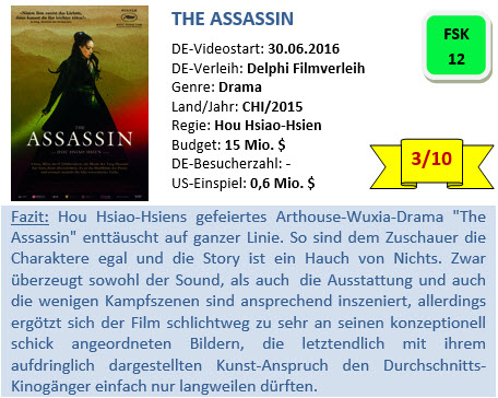 The Assassin - Bewertung